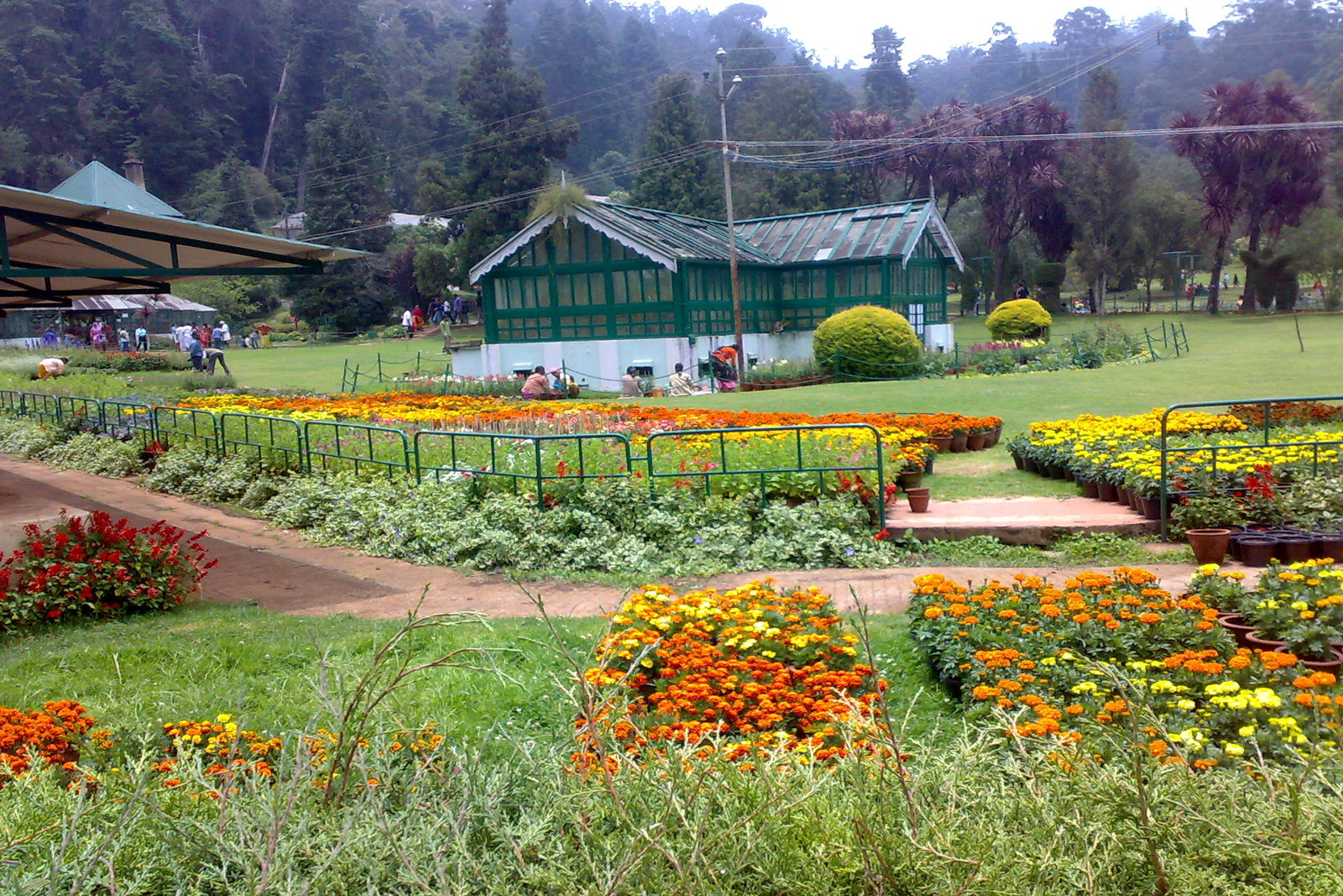 green nest resort -ooty sightseeing